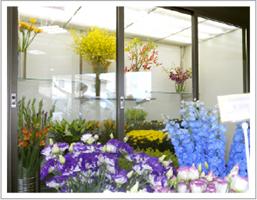 花屋の生花用のショーケースのLED照明の施工